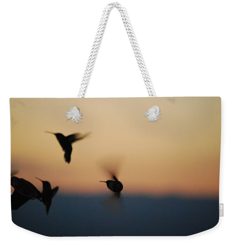 Becky Furgason Weekender Tote Bag featuring the photograph #removingtherival by Becky Furgason