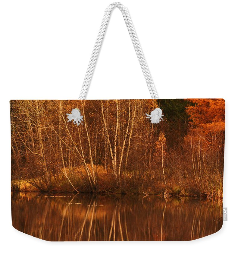 Autumn Weekender Tote Bag featuring the photograph Restes D'automne by Aimelle