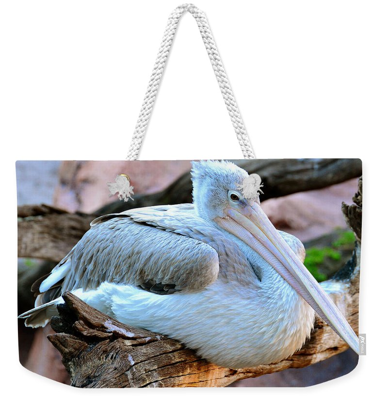 Great White Pelican Weekender Tote Bag featuring the photograph Resting Great White Pelican by David Lee Thompson