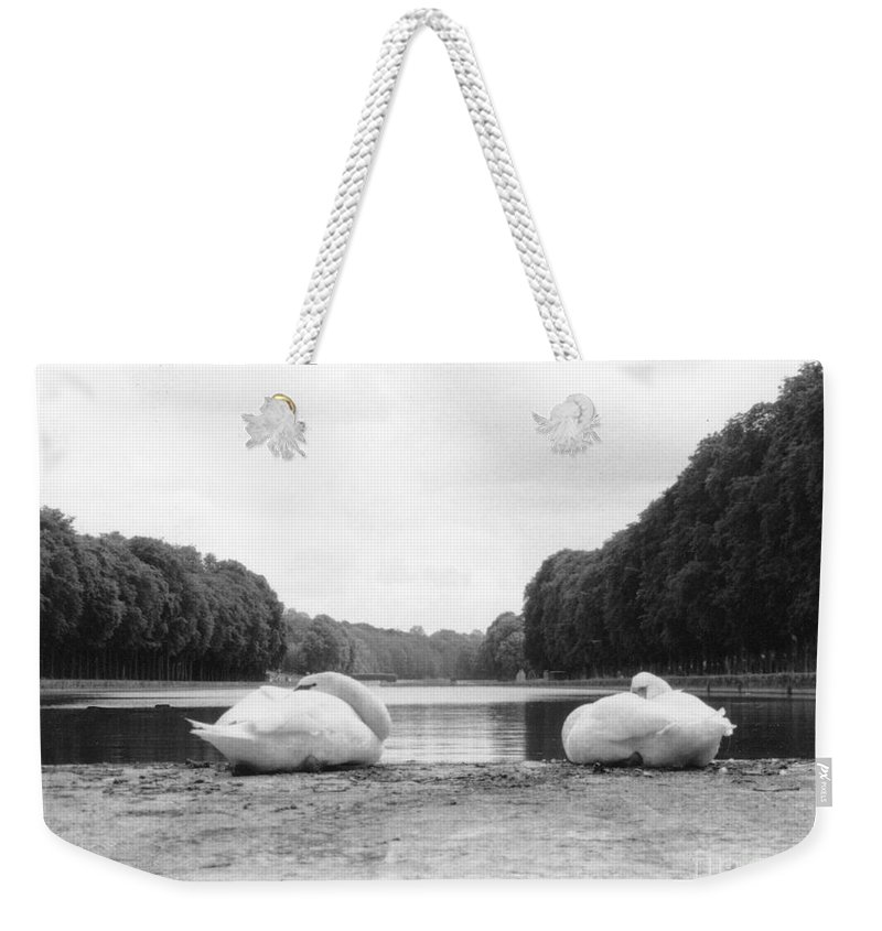 Swans Weekender Tote Bag featuring the photograph Resting Swans by Christine Jepsen