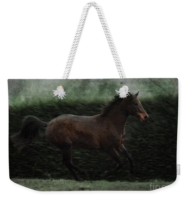 Horse Weekender Tote Bag featuring the photograph Retro Horse by Angel Ciesniarska