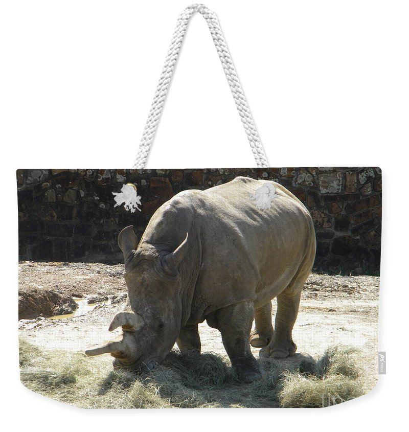 Rhino Weekender Tote Bag featuring the photograph Rhino Eating by Nathanael Smith