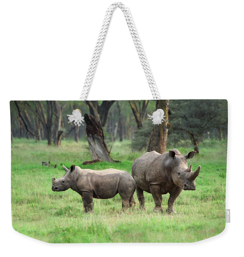 Africa Weekender Tote Bag featuring the photograph Rhino Family by Sebastian Musial