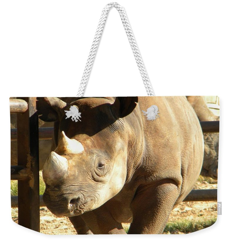 Zoo Weekender Tote Bag featuring the photograph Rhino by Nathanael Smith