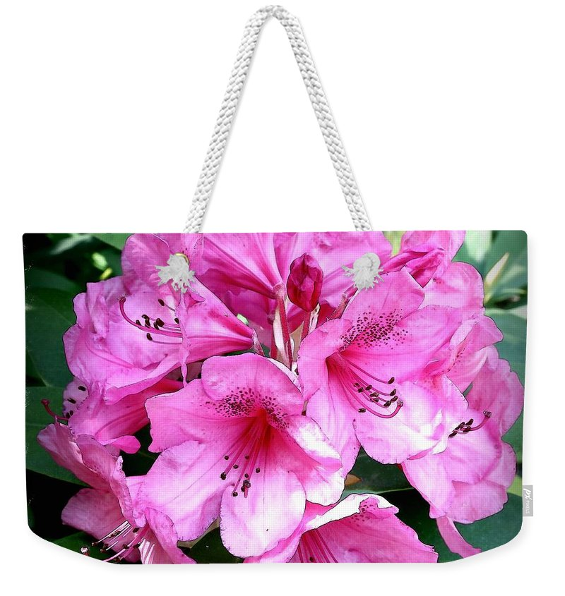 Rhododendron Weekender Tote Bag featuring the photograph Rhododendron Square With Border by Carol Groenen