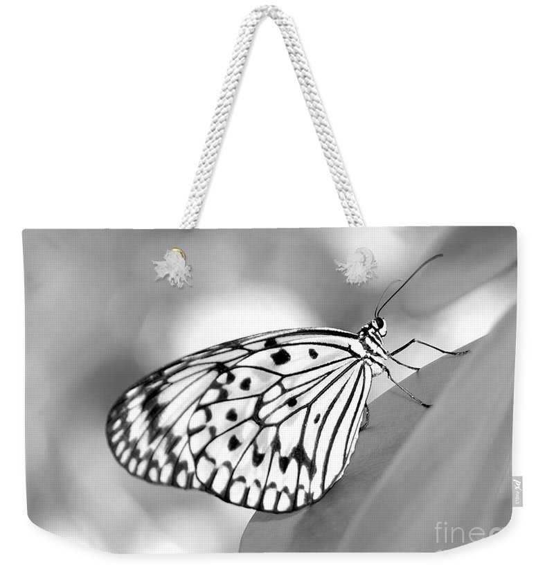 Amazing Weekender Tote Bag featuring the photograph Rice Paper Butterfly Resting For A Second by Sabrina L Ryan