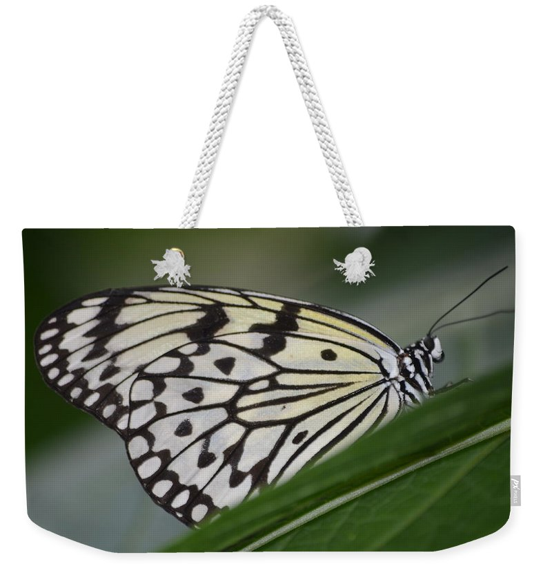 Rice Paper Weekender Tote Bag featuring the photograph Rice Paper On Leaf by Richard Bryce and Family