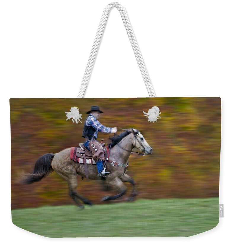 Buckskin Horse Weekender Tote Bag featuring the photograph Ride Em Cowboy by Susan Candelario