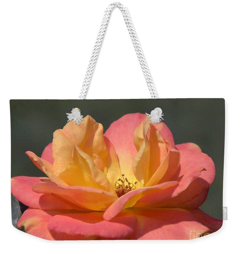 Rose Weekender Tote Bag featuring the photograph Rio Samba by Terri Winkler