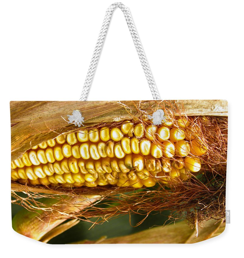 Seed Weekender Tote Bag featuring the photograph Ripe Corn by Nick Kirby