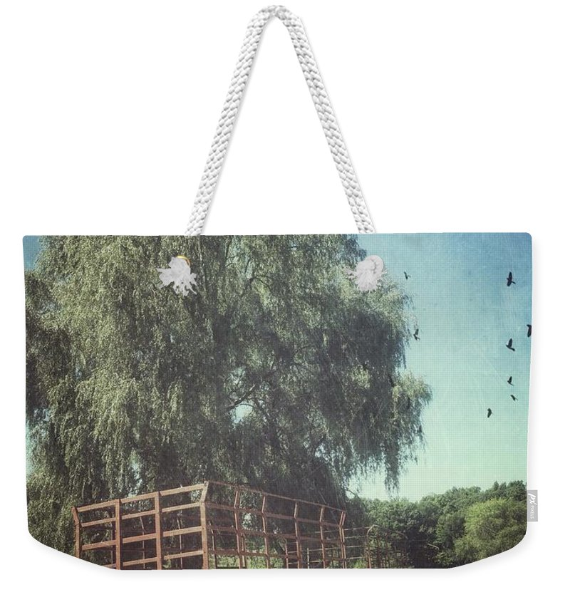 Vermont Weekender Tote Bag featuring the photograph Morgan Horse Farm Vermont Farm Birds by Andy Gimino