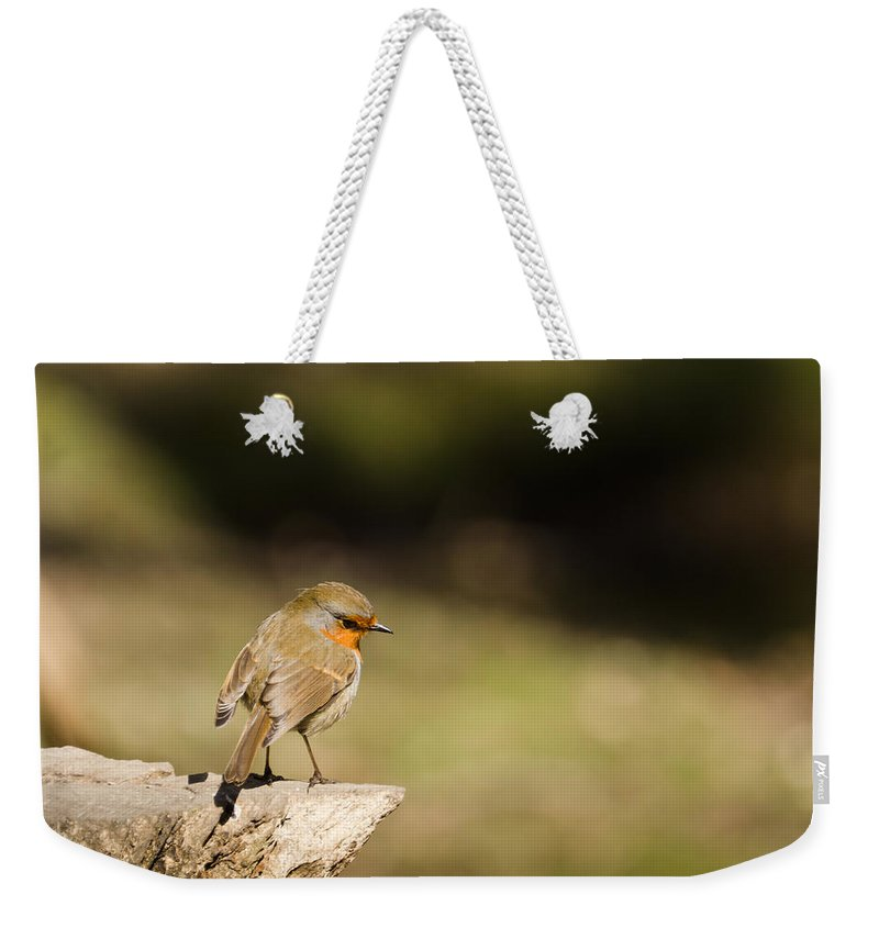 Animal Weekender Tote Bag featuring the photograph Robin On A Log by David Head