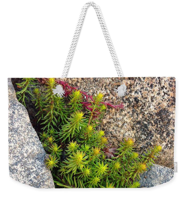 Flower Weekender Tote Bag featuring the photograph Rock Flower by Meghan at FireBonnet Art