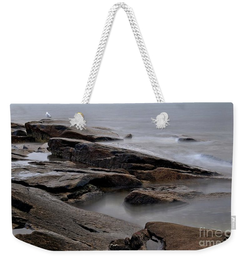 Rockport Weekender Tote Bag featuring the photograph Rockport Seagull by Kenny Glotfelty