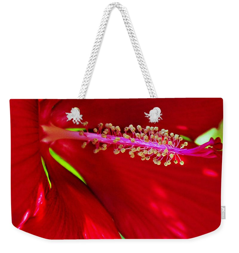 Rolling Hills Wildlife Adventure  Weekender Tote Bag featuring the photograph Rolling Hills 5 by Walter Herrit