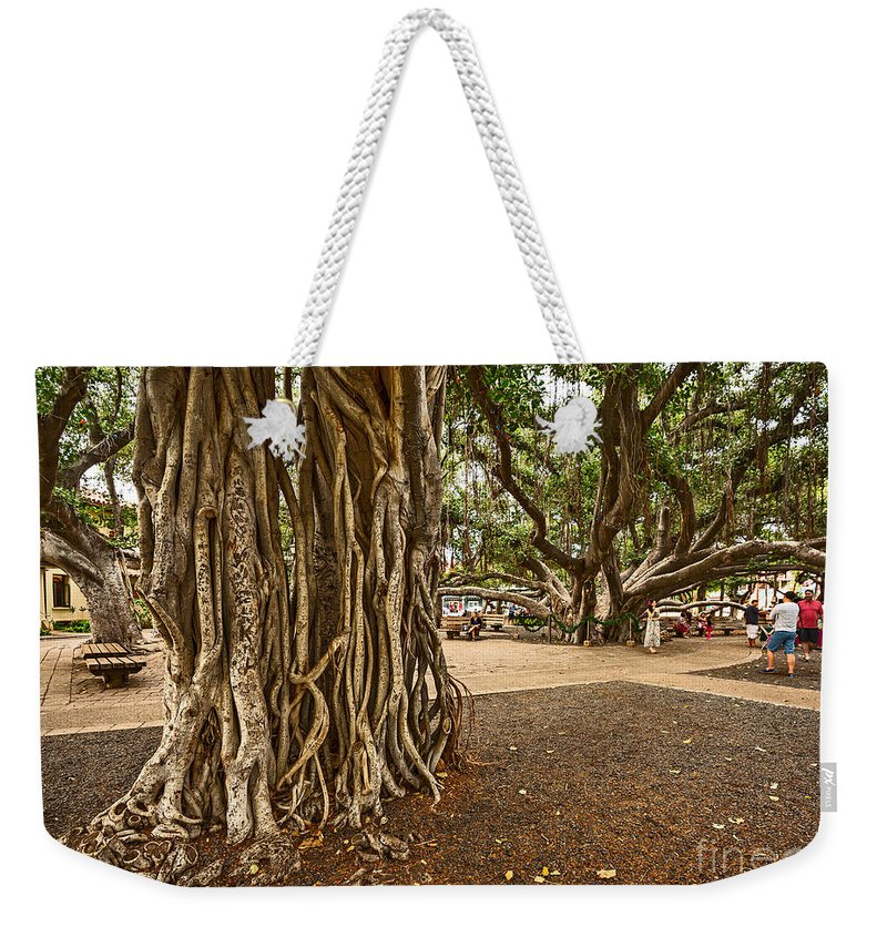 Banyan Tree Park Weekender Tote Bag featuring the photograph Roots - Banyan Tree Park In Maui by Jamie Pham
