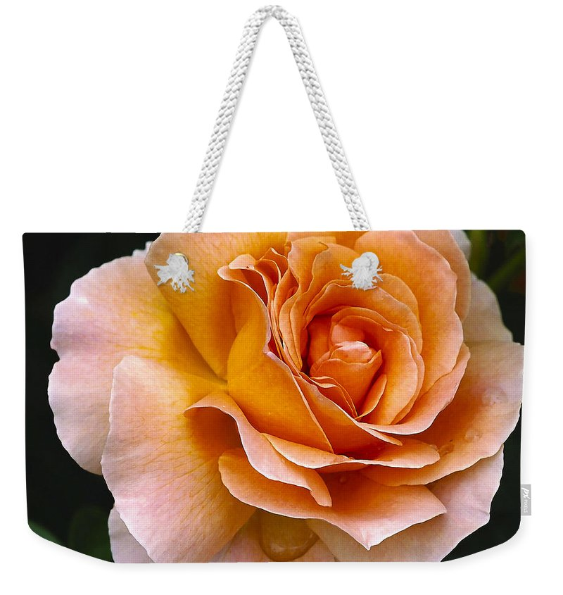 Rose Weekender Tote Bag featuring the photograph Rose 4 by Ingrid Smith-Johnsen