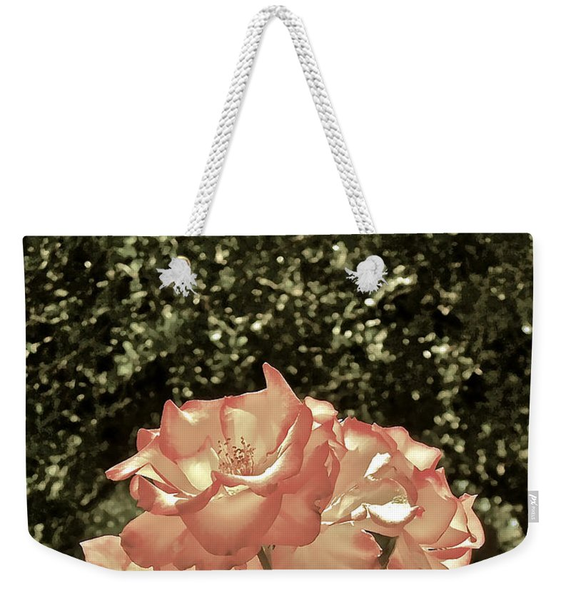 Flowers Weekender Tote Bag featuring the photograph Rose 55 by Pamela Cooper