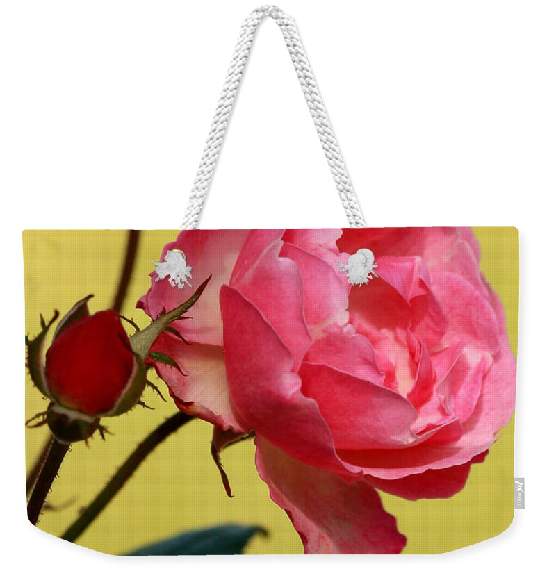 Macro Weekender Tote Bag featuring the photograph Rose And Rose Buds by Sabrina L Ryan