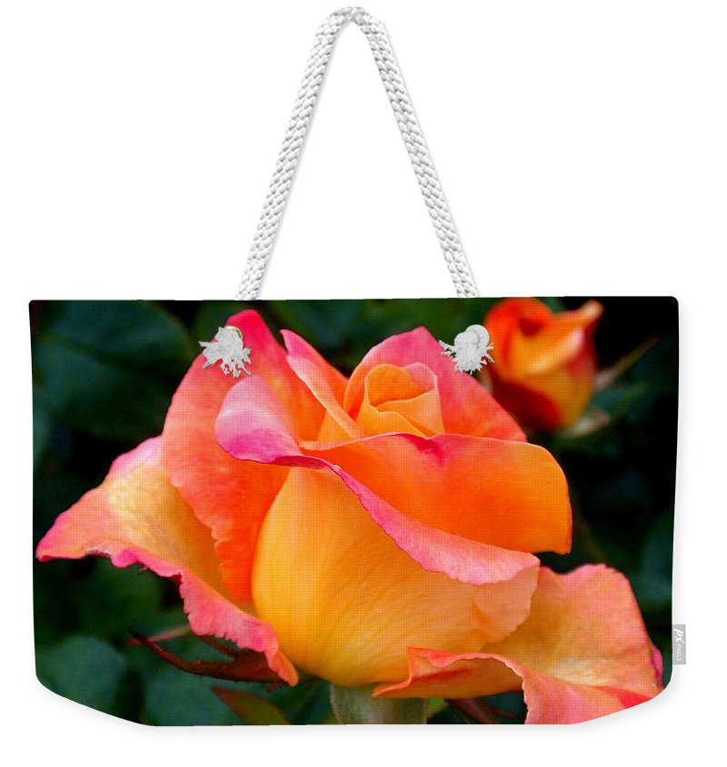 Rose Weekender Tote Bag featuring the photograph Rose Beauty by Rona Black