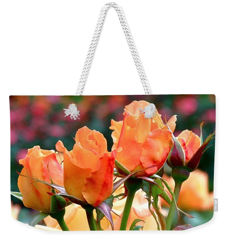Roses Weekender Tote Bag featuring the photograph Rose Bunch by Rona Black