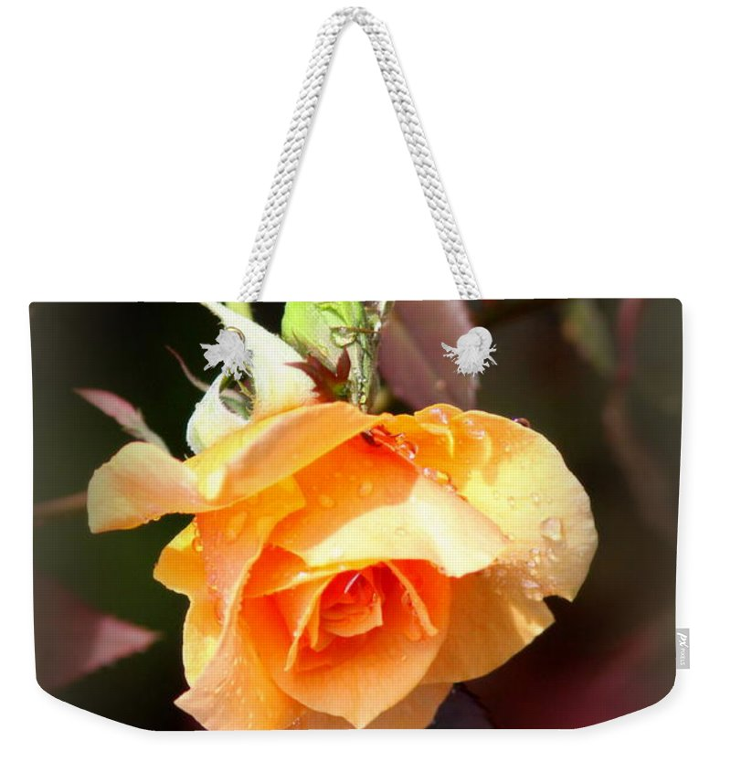 Thank You Weekender Tote Bag featuring the photograph Rose - Flower - Card by Travis Truelove