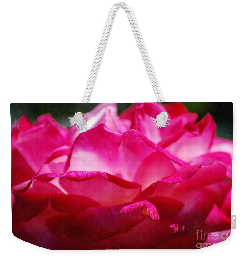 Rose Weekender Tote Bag featuring the photograph Rose Like A Lotus Flower by Sharon Elliott
