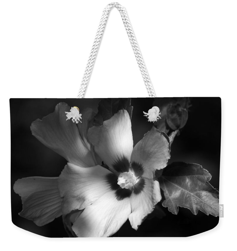 Roses Weekender Tote Bag featuring the photograph Rose Of Sharon by Donna Kennedy