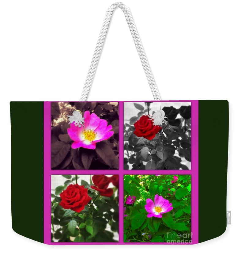 Briar Rose Weekender Tote Bag featuring the photograph Rose Window by Joan-Violet Stretch