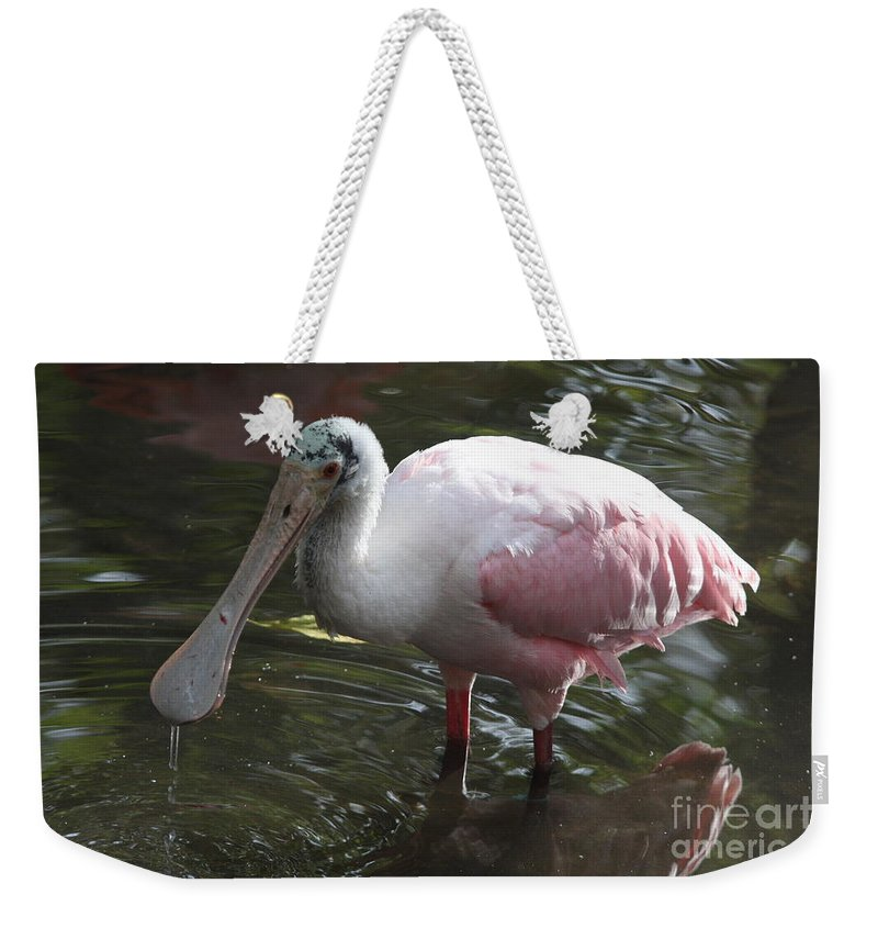 Roseate Spoonbill Weekender Tote Bag featuring the photograph Roseate Spoonbill by Christiane Schulze Art And Photography