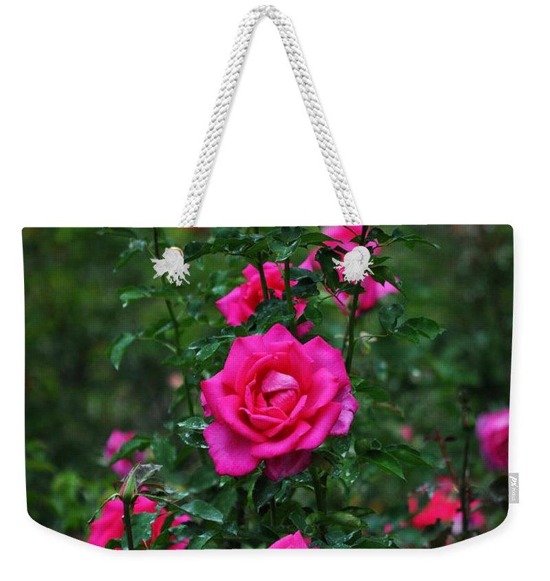 Rosebush Photographs Weekender Tote Bags
