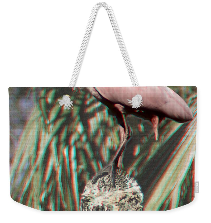 Heron Weekender Tote Bag featuring the photograph Rosey - 3d by James Ekstrom