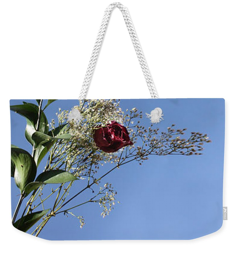 Roses Weekender Tote Bag featuring the photograph Rosy Reflection - Left Side by Gravityx9 Designs