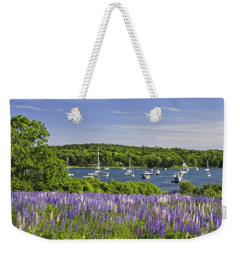 Maine Weekender Tote Bag featuring the photograph Round Pond Lupine Flowers On The Coast Of Maine by Keith Webber Jr
