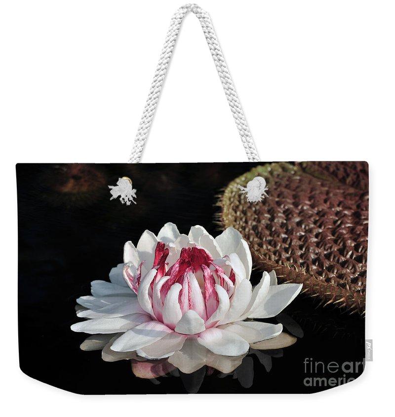 Summer Weekender Tote Bag featuring the photograph Royal Water Platter by Terri Winkler