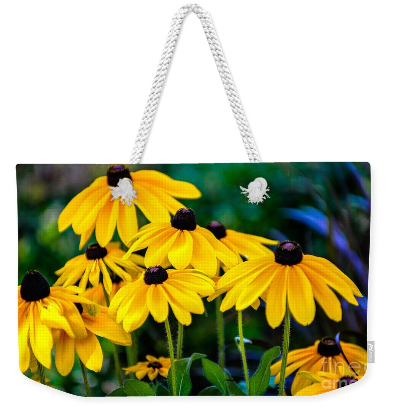 Flower Weekender Tote Bag featuring the photograph Rudbeckia Hirta by Dale Powell