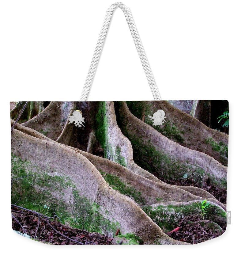 Rudraksha Weekender Tote Bag featuring the photograph Rudraksha 2 by Mary Deal