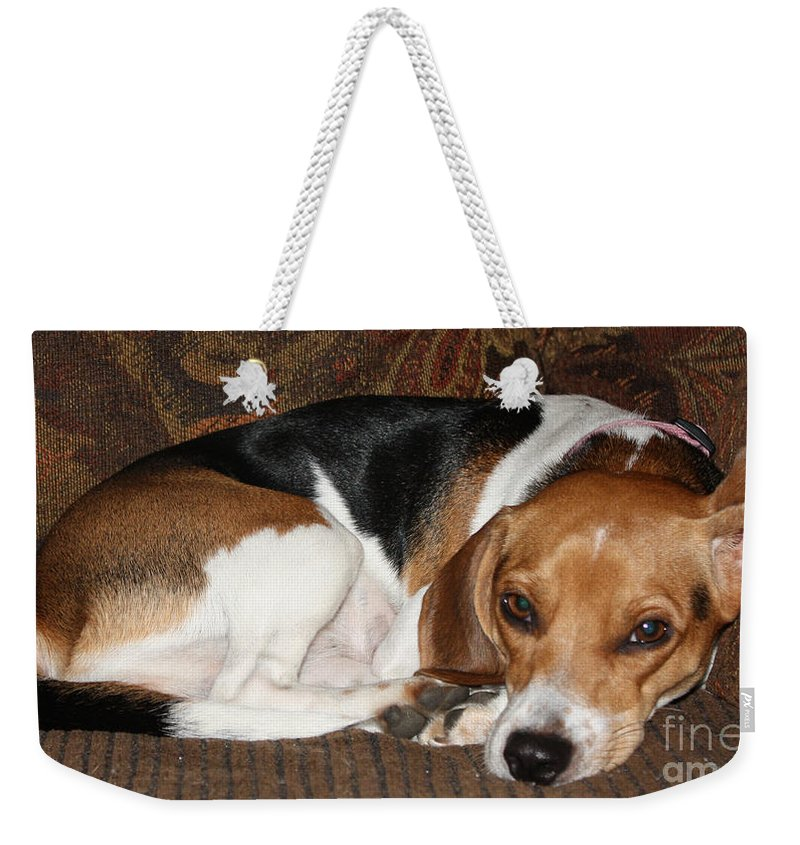 Ruff Day Weekender Tote Bag featuring the photograph Ruff Day by John Telfer