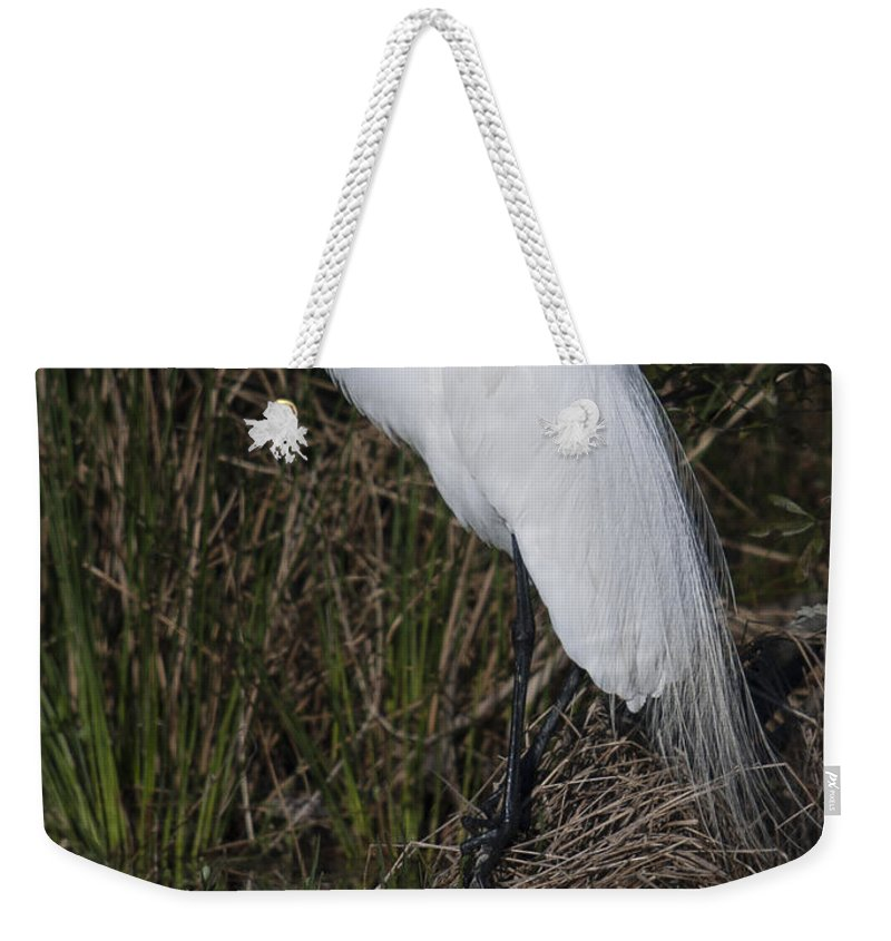 Great Weekender Tote Bag featuring the photograph Ruffled Feathers by Dale Powell