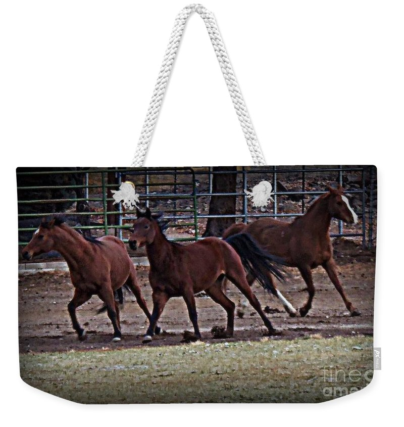 Acrylic Prints Weekender Tote Bag featuring the photograph Run Free by Bobbee Rickard