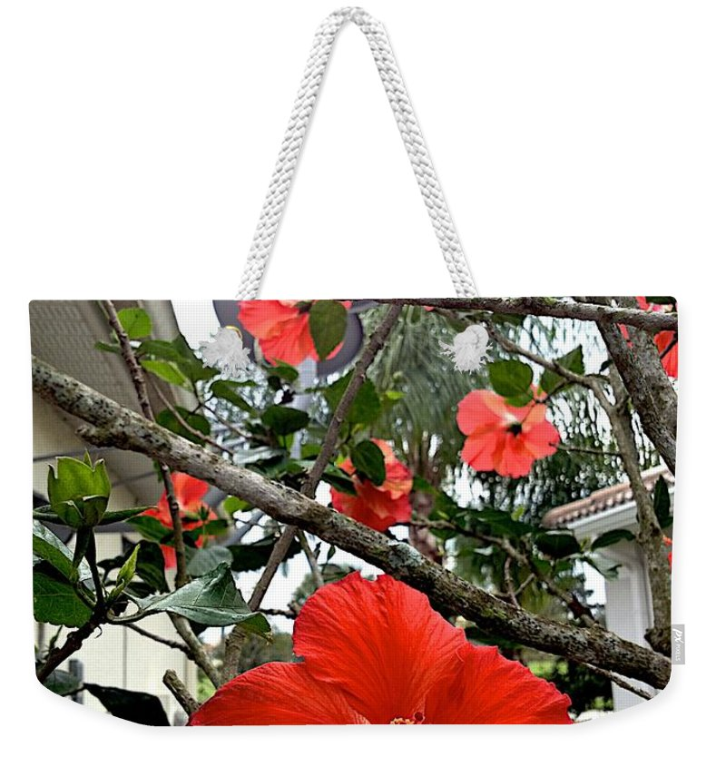 Blooms Weekender Tote Bag featuring the photograph Running by Joseph Yarbrough