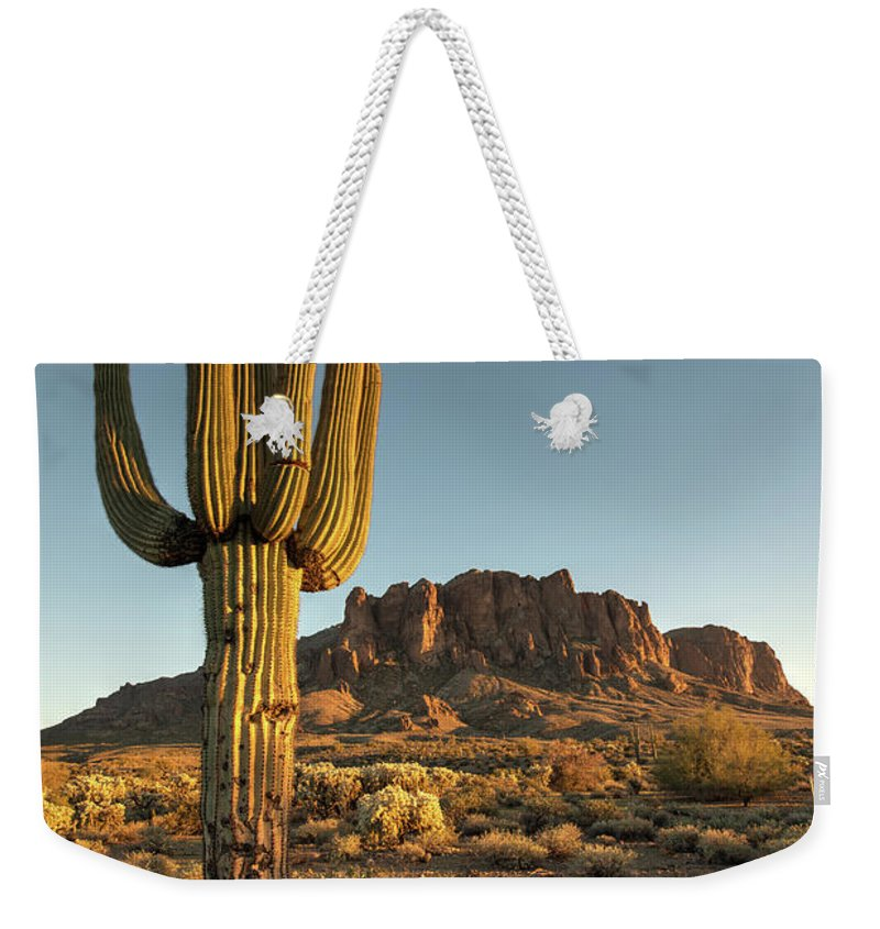 Saguaro Cactus Weekender Tote Bag featuring the photograph Saguaro Cactus And Superstition by Kjschoen