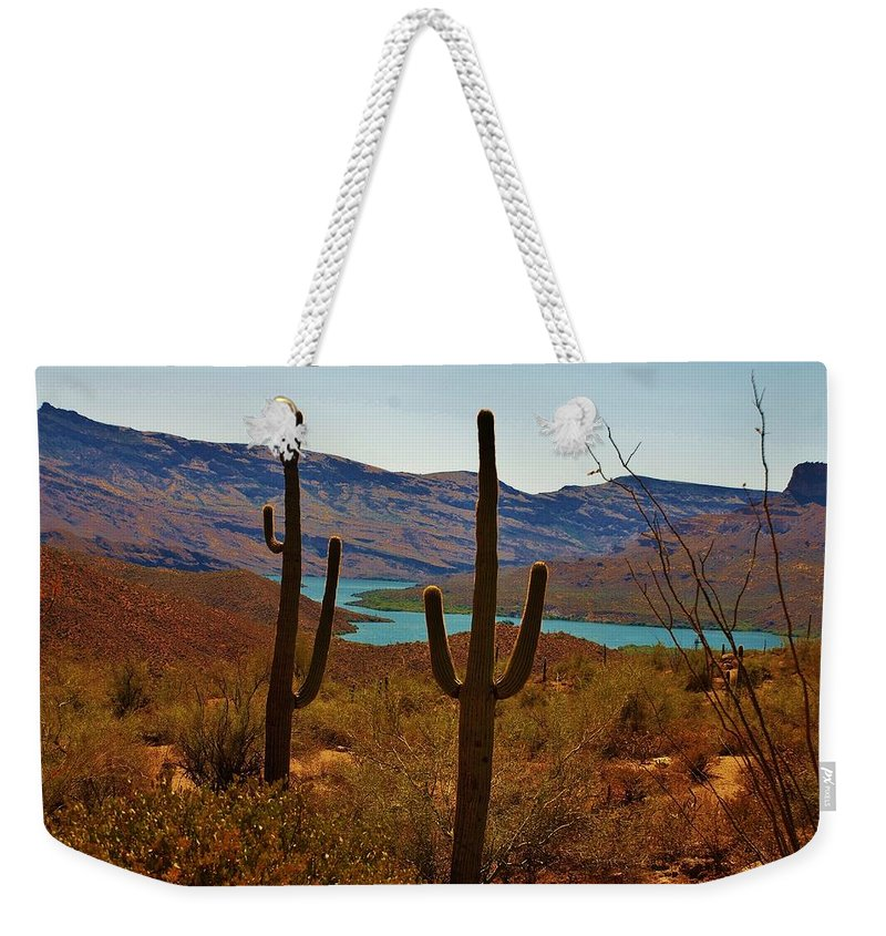 America Weekender Tote Bag featuring the photograph Saguaros In Arizona by Dany Lison
