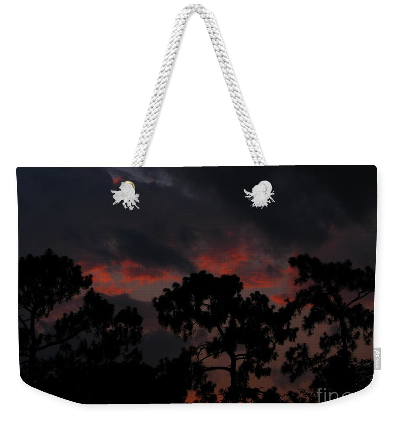 Art For The Wall...patzer Photography Weekender Tote Bag featuring the photograph Salmon Sunset by Greg Patzer