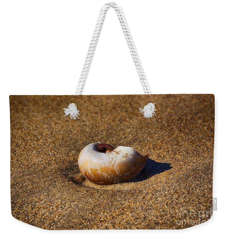 Snail Weekender Tote Bag featuring the photograph Sanded by Joe Geraci