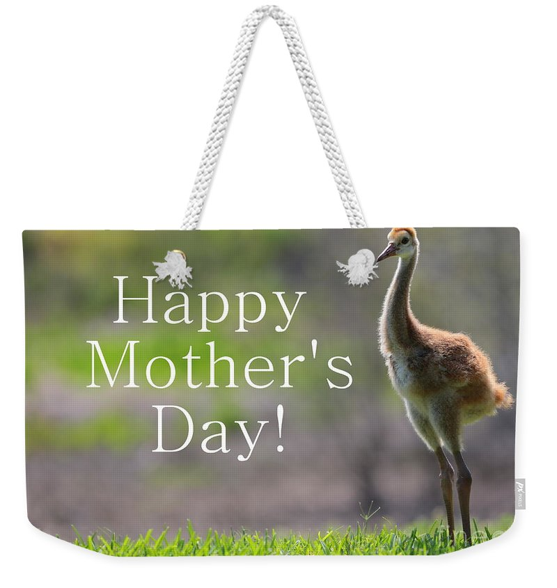 Sandhill Crane Weekender Tote Bag featuring the photograph Sandhill Chick Mother's Day Card by Carol Groenen