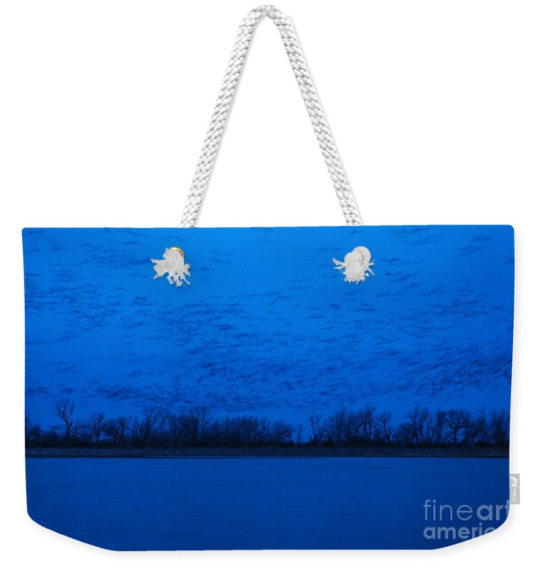 Sandhill Cranes Weekender Tote Bag featuring the photograph Sandhill Crane Blue Hour by Joan Wallner