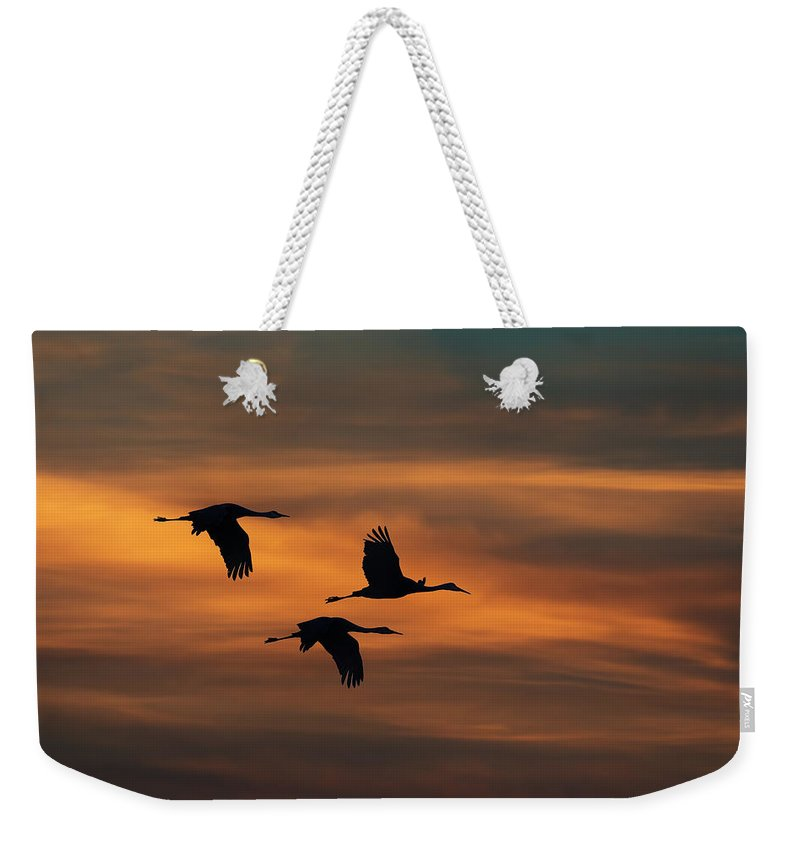 Bird Weekender Tote Bag featuring the photograph Sandhill Crane Sunset by Martin Belan