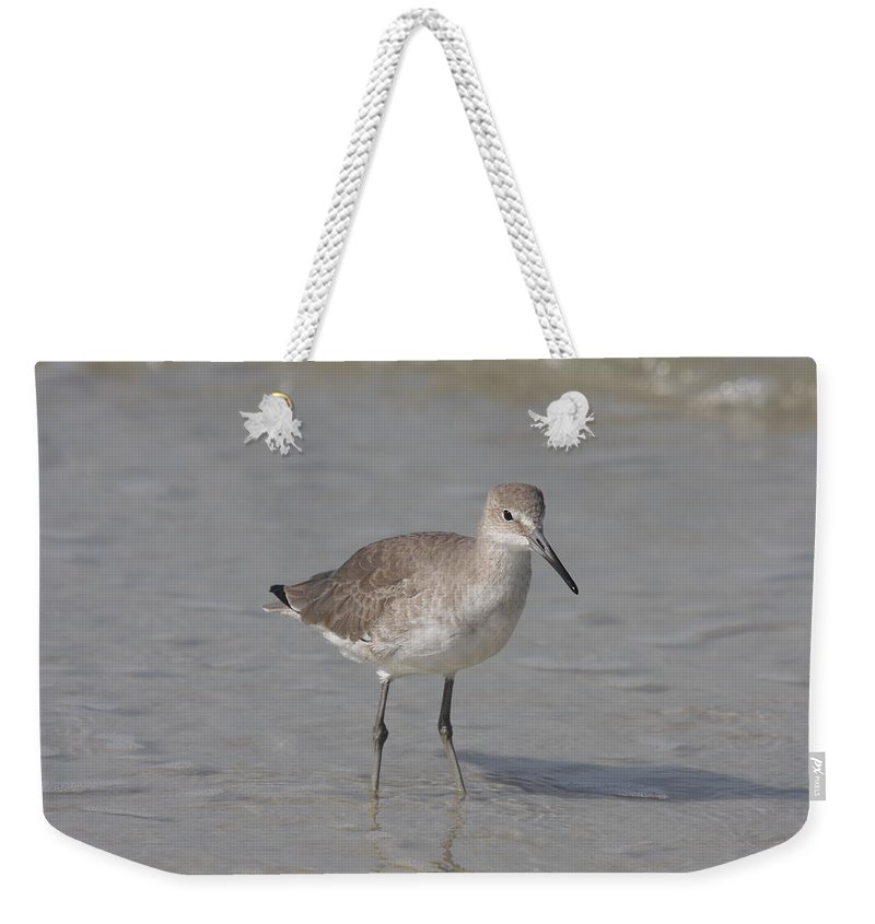 Sandpiper Weekender Tote Bag featuring the photograph Sandpiper by Christiane Schulze Art And Photography