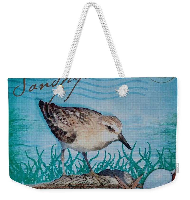 Bird Weekender Tote Bag featuring the photograph Sandpiper by Rob Hans